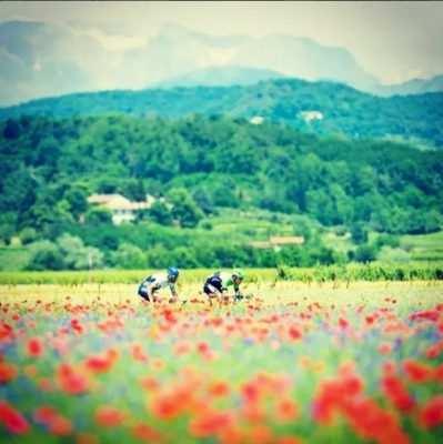 bicis italia