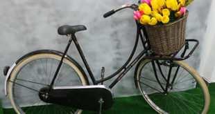 bicicleta con tulipanes