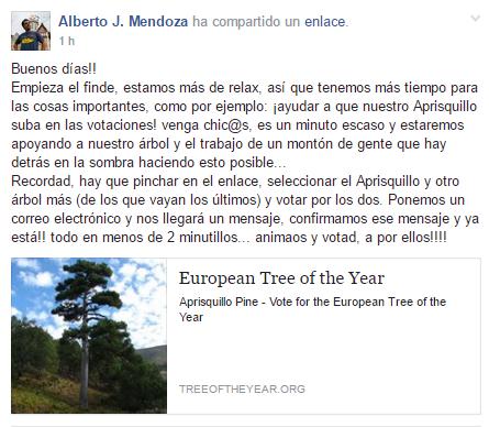 Votar Arbol del Año 2017