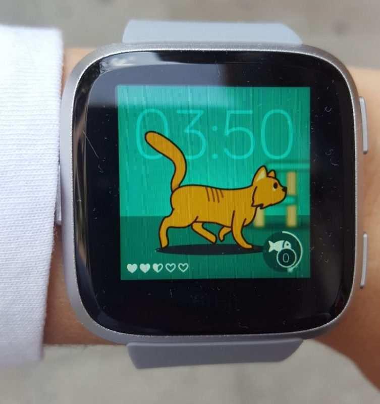 Fitbit Pet