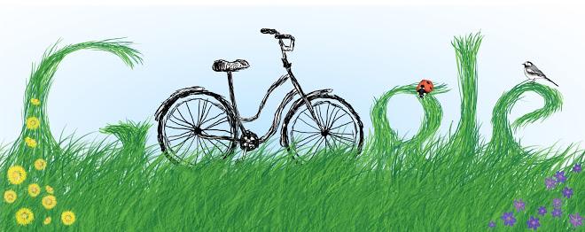 bici google