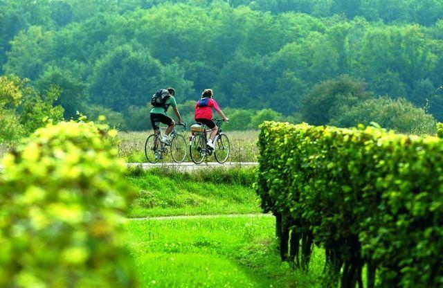 enoturismo en bici